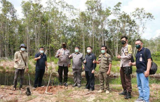 Gerakan CU Keling Kumang dan Solidaridad Tanam 1.000 Pohon, Subandrio: Selamatkan Paru-Paru Dunia