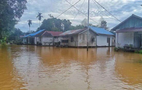 Diguyur Hujan Deras, Desa Nyangkom Terendam Banjir Hingga 2 Meter